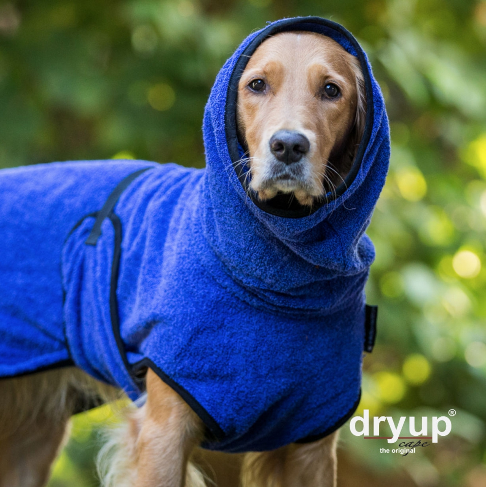 Dryup Cpae Hundebademantel blau , versadkostenfrei<br />44,99 € *