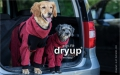 Dryup Zip-Fit Body bordeaux