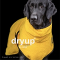 Dryup Cape Hundebademantel yellow (gelb)